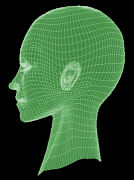 Wireframe-head jpg
